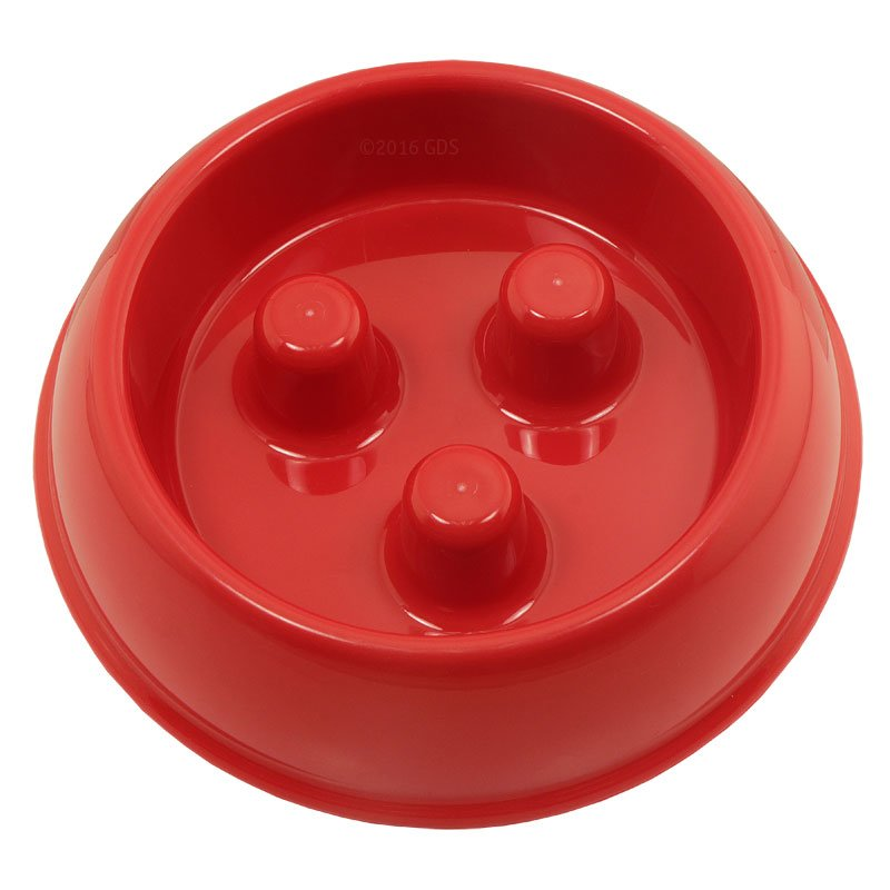 Best Dog Bowl For Fast Eaters