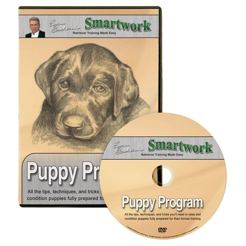 Smartwork Puppy Program