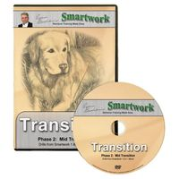 buy  Smartwork Transition Phase 2 DVD with Evan Graham