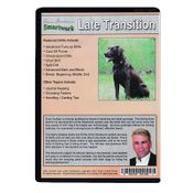 shop Smartwork Transition Phase 3: Late Transition Drills DVD back