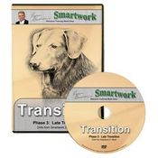 shop Smartwork Transition Phase 3 DVD with Evan Graham