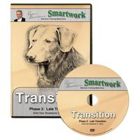 buy  Smartwork Transition Phase 3 DVD with Evan Graham