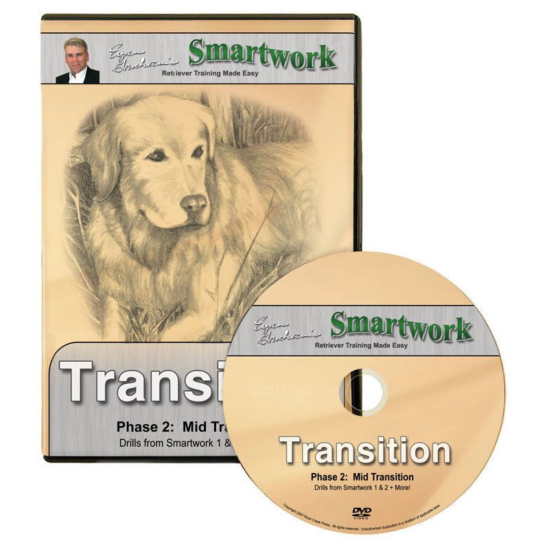 Smartwork Transition Volume 2