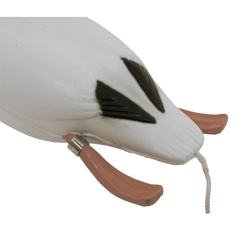 Snow Goose Dokken's Dead Fowl Trainers Tail