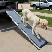 shop PetSafe Happy Ride Extra Long Telescoping Dog Ramp