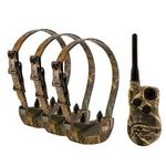 shop  SportDOG SD-1825X Wetland Hunter Camo 4-dog