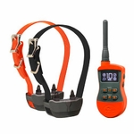 shop SportDOG SportTrainer SD-875E 2-dog