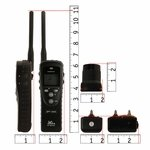 shop SPT 2432 Collar and Transmitter Scaled