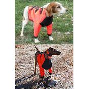 shop Sylmar Front Canine Body Suit in Use