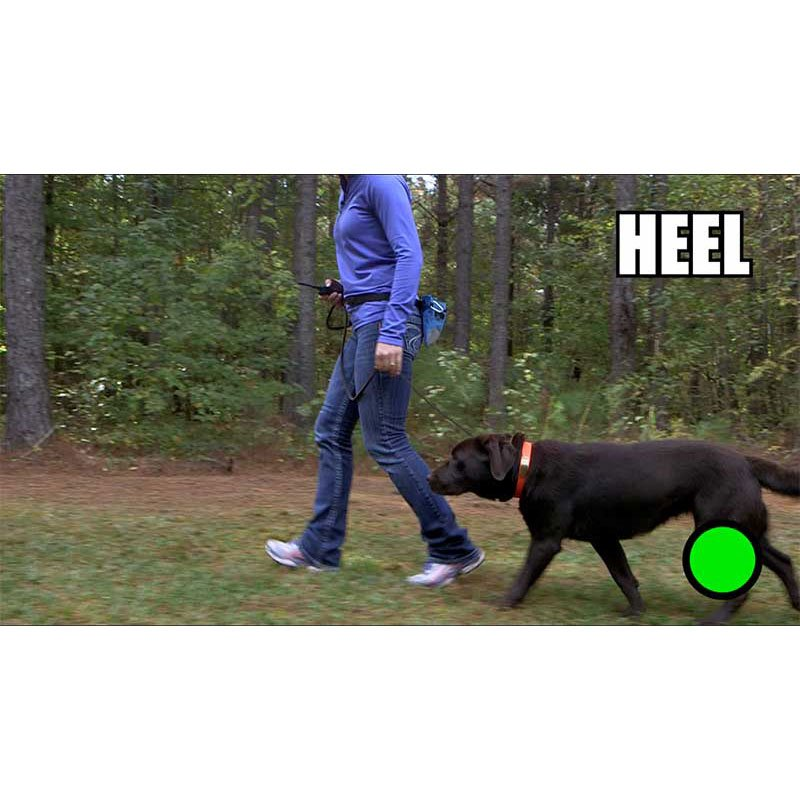 Teaching HEEL