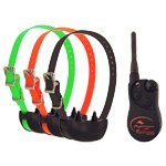 shop THREE DOG SportDOG Multi-dog Collars