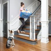 shop Threshold Pet Barrier on Stairs