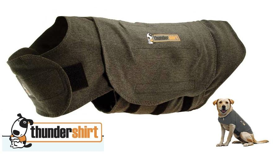 Closeout Thundershirt Calming Anti Anxiety Vest For Dogs