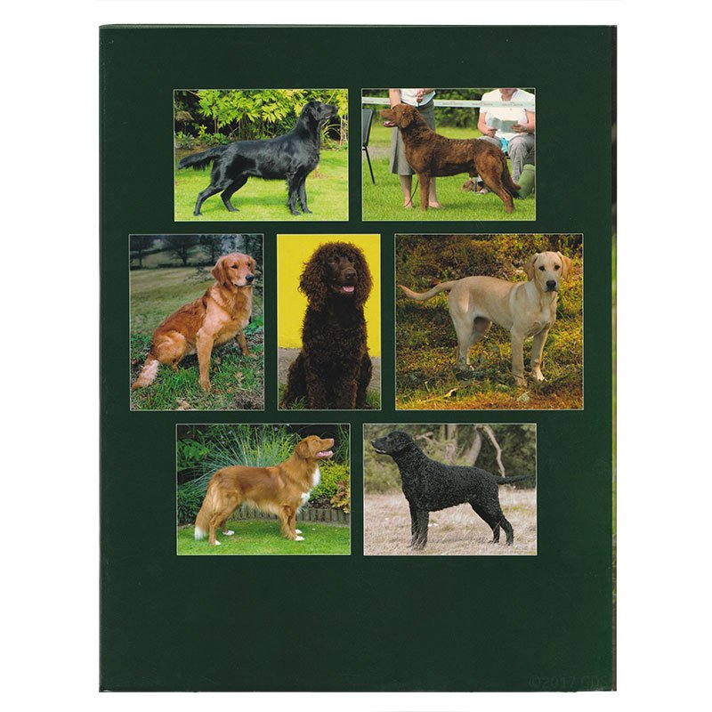 Training the Working Retriever Book Back Cover