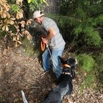 shop TufFlex Chain Tree Lead on a Hound as Snap Lead