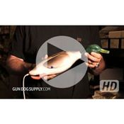 shop VIDEO: Dokken's Deadfowl Trainer Mallard