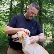 shop VIDEO: How to Measure Your Dog