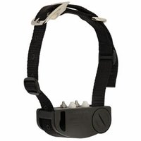 buy  Walkr Electronic Leash Dog Walking Training Collar by Eltrex4
