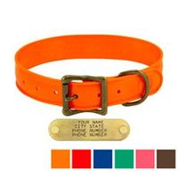 shop WigWag 1-1/4 in. Large Dog Collar -- Fits 18-23 in. Neck
