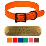 WigWag 1-1/4 in. Large Dog Collar -- Fits 18-23 in. Neck