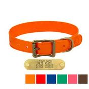 shop WigWag 1 in. Medium Dog Collar -- Fits 14-19 in. Neck