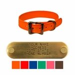 shop WigWag 1 in. Small Dog Collar -- Fits 12-15 in. Neck