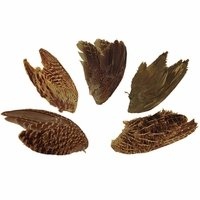 buy  Wings -- Game Birds (Grouse, Pheasant, Quail)