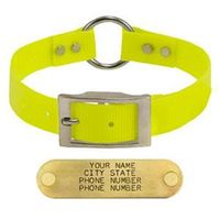shop YELLOW 1 in. Day Glow Center-Ring Collar