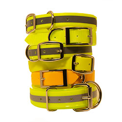 shop Yellow Dog Collars