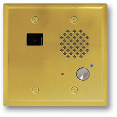 Polished Brass Double Gang Entry Phone with Color Video Camera and Enhanced Weather Protection