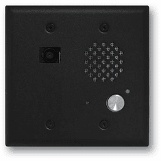 Satin Black Double Gang Entry Phone with Color Video Camera and Enhanced Weather Protection