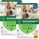 Advantage II Flea Control for Extra Large Dogs Over 55 lbs, 12 Month
