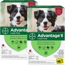 Advantage II Flea Control for Large Dogs 21-55 lbs, 12 Month