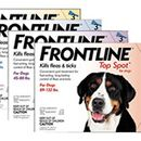 3 Month Frontline Plus/ Frontline TopSpot Product