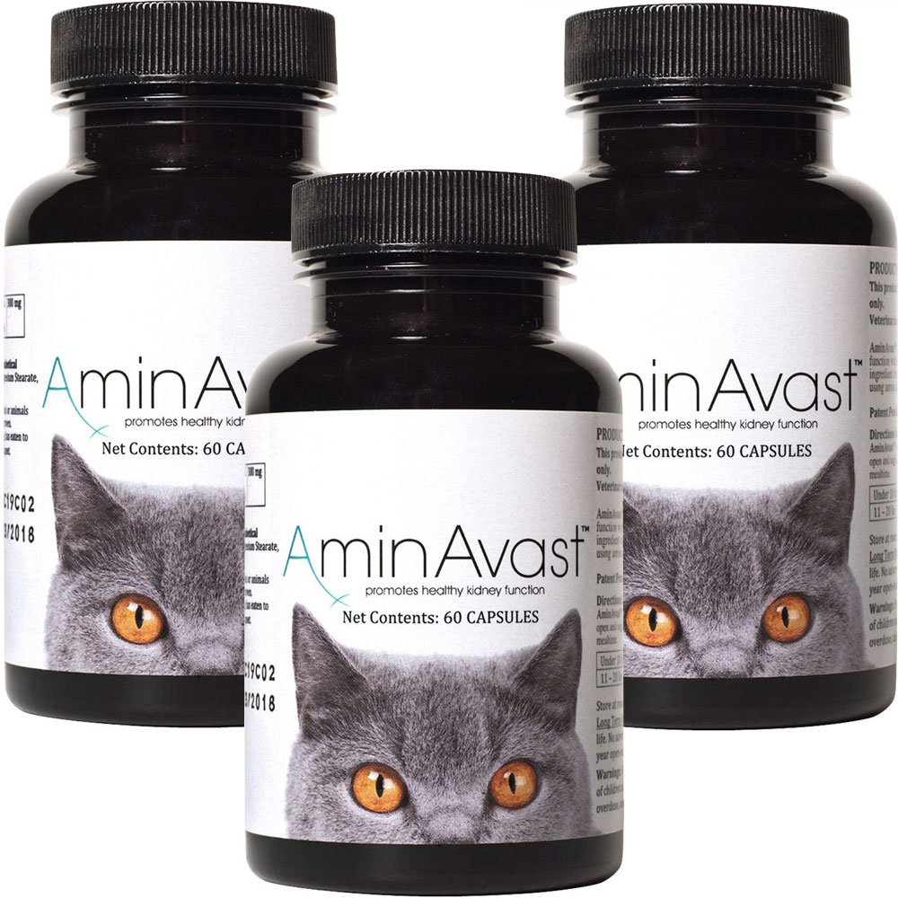 3 Pack Aminavast 174 Kidney Support For Cats 180 Capsules