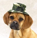 """Casual Canine Green Camo Bucket Hat Small (5"""")"""