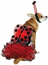 Casual Canine Lucky Bug Costume Red - SMALL