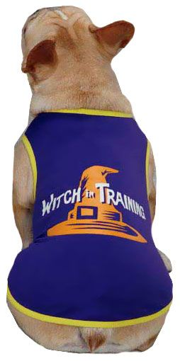 Casual Canine Witch in Training Tee Purple - MEDIUM