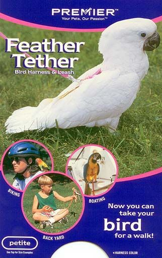 Feather Teather Bird Harness