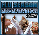 Flu Season Preparation Guide
