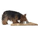 FurHaven Muddy Paws Towel & Shammy Rug - Sand (Small)