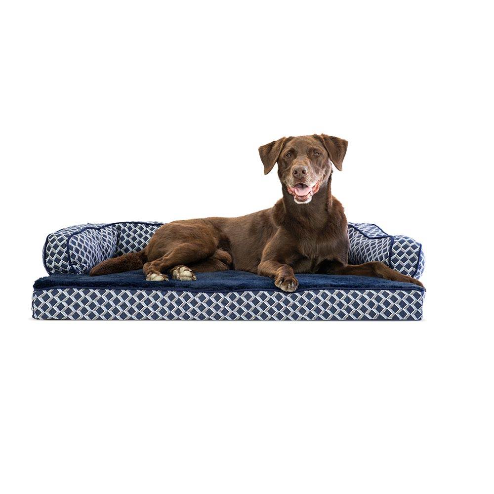 Enjoyable Furhaven Plush Decor Comfy Couch Orthopedic Sofa Style Pet Bed Diamond Blue Large Bralicious Painted Fabric Chair Ideas Braliciousco