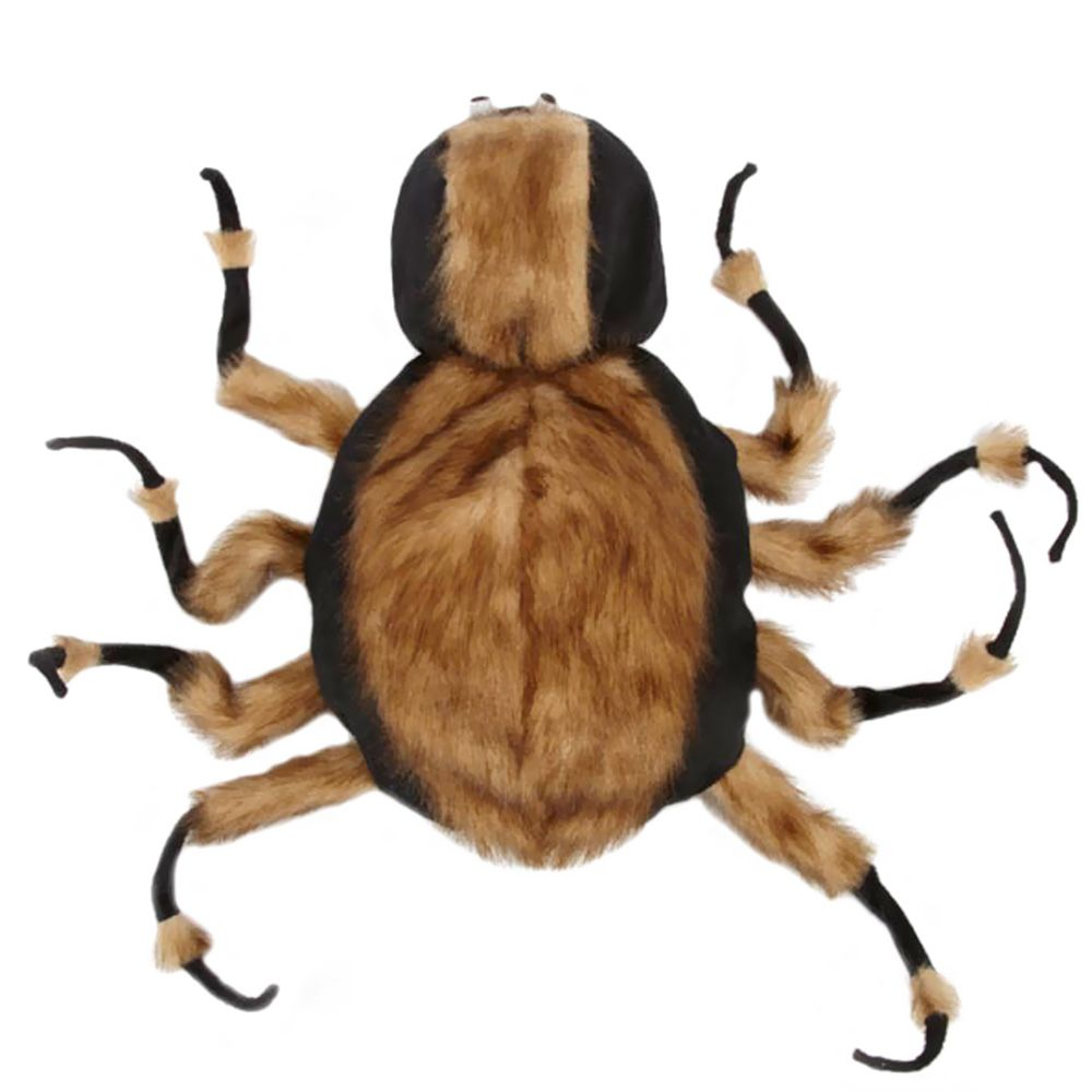 tarantula dog costumes