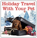 Holiday Traveling with your Pets
