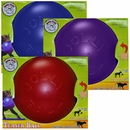 Jolly Pets Teaser Ball with Inside Ball (8 in) - Assorted