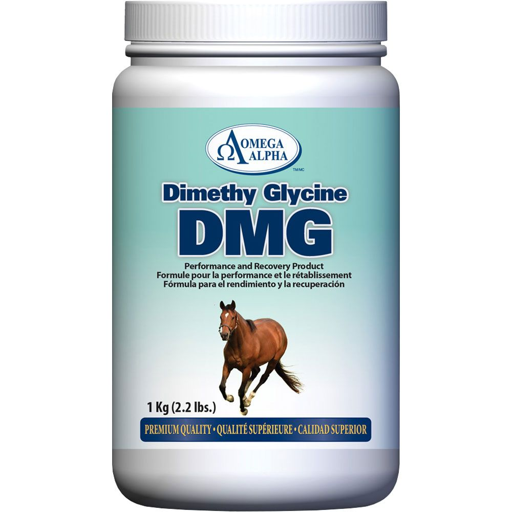 Omega Alpha Dimethyl Glycine - DMG (2 lb)