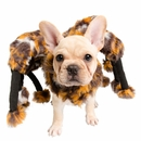 Pet Krewe's Scary Spider Costume