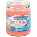 Pet Odor Exterminator Candle - Miami Sunrise (13 oz)