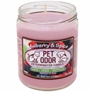 Pet Odor Exterminator Candle - Mulberry & Spice Jar (13 oz)