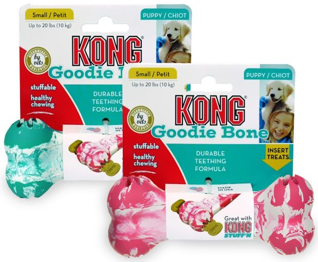 Small Puppy Kong Goodie Bone (Assorted Colors)